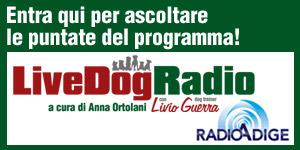 LiveDog Radio