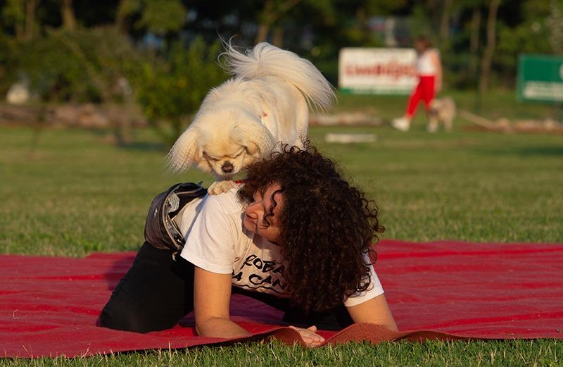 LiveDog Dance: lo stage per ballare con il tuo cane!