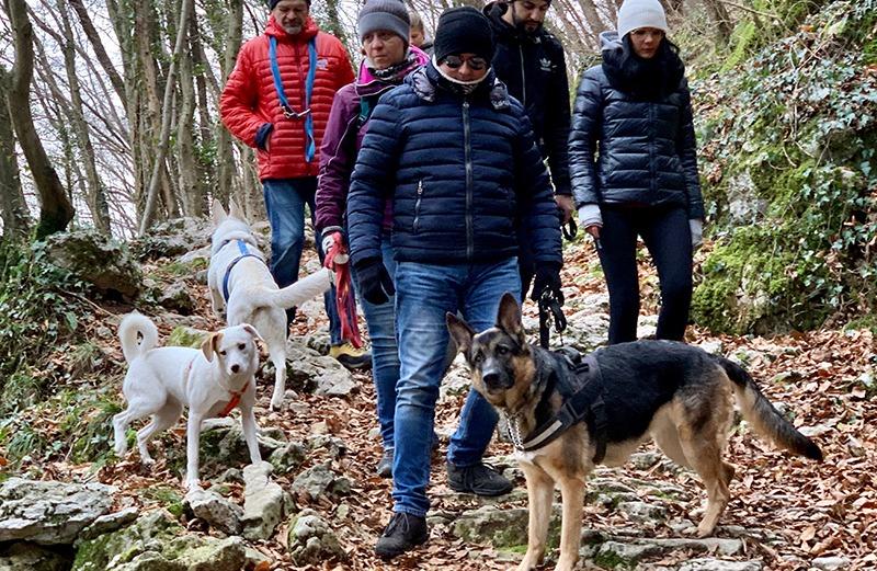 LiveDog Trekking il 6 gennaio: la passeggiata cinofila della Befana