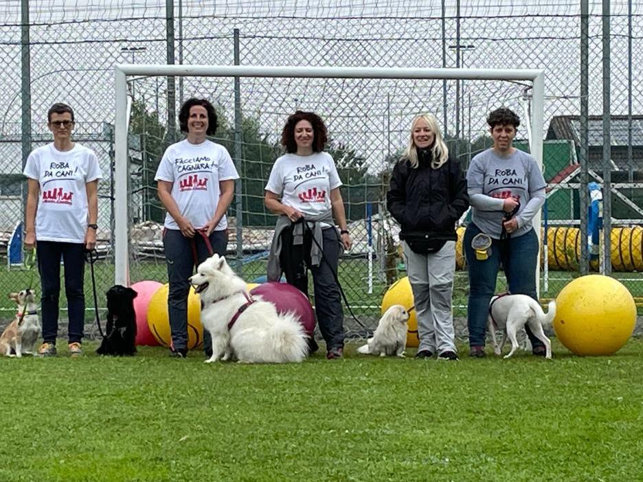 Read more about the article Il Treibball LiveDog Team con la Presidente AIT